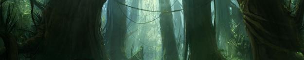 Forêt des Chênes Pleureurs