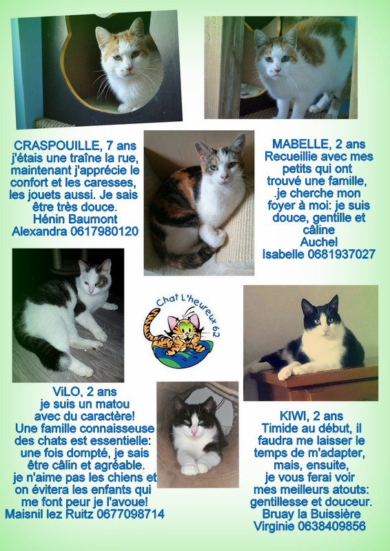 Craspouille, née le 30 octobre 2010 12-20113