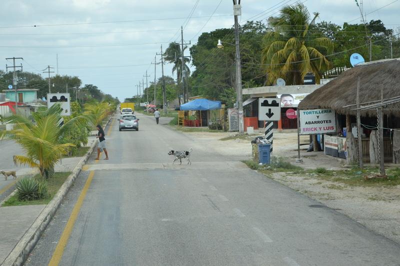 Carnival Glory : croisière dans les Caraïbes Dsc_0013