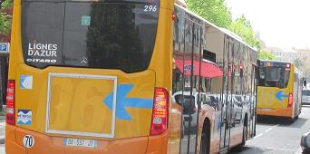Un passionné de bus parmi d'autres