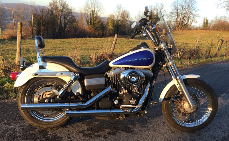 Ce que vous pensez de votre Harley ? Img_2212