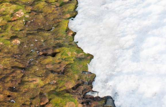 15 indicateurs du changement climatique 1510