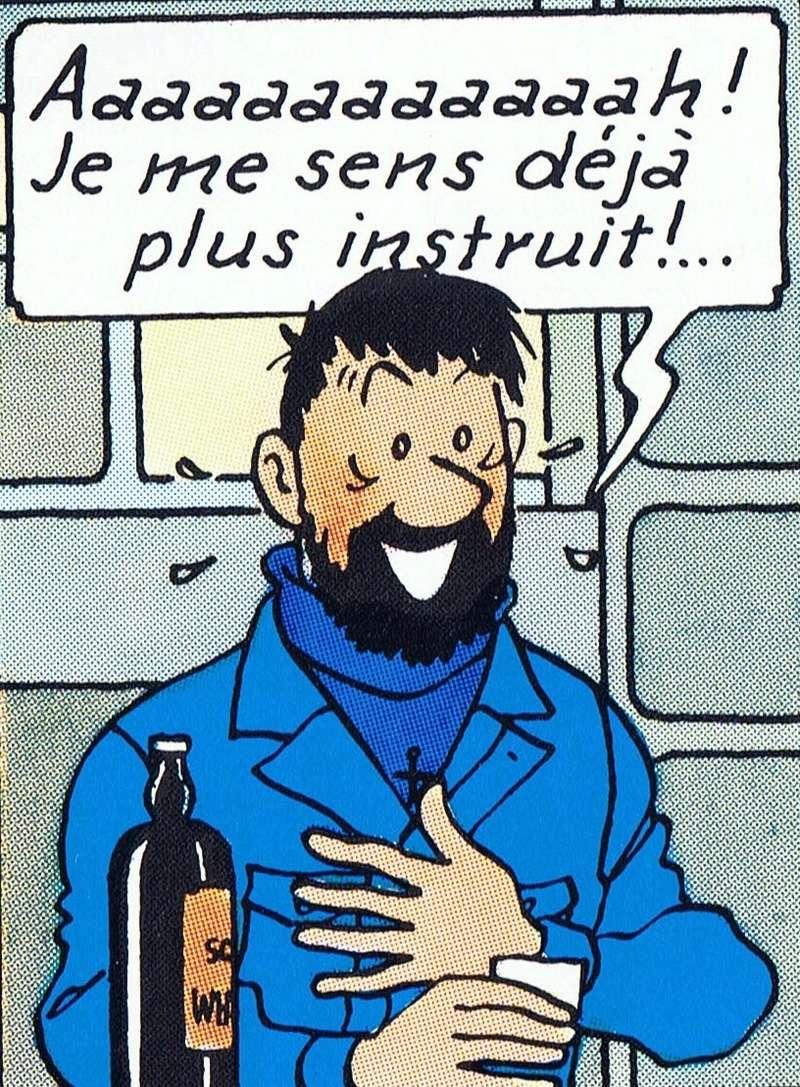 Le principe d'Heisenberg, par François Corteggiani et Christophe Alvès - Page 3 Haddoc10