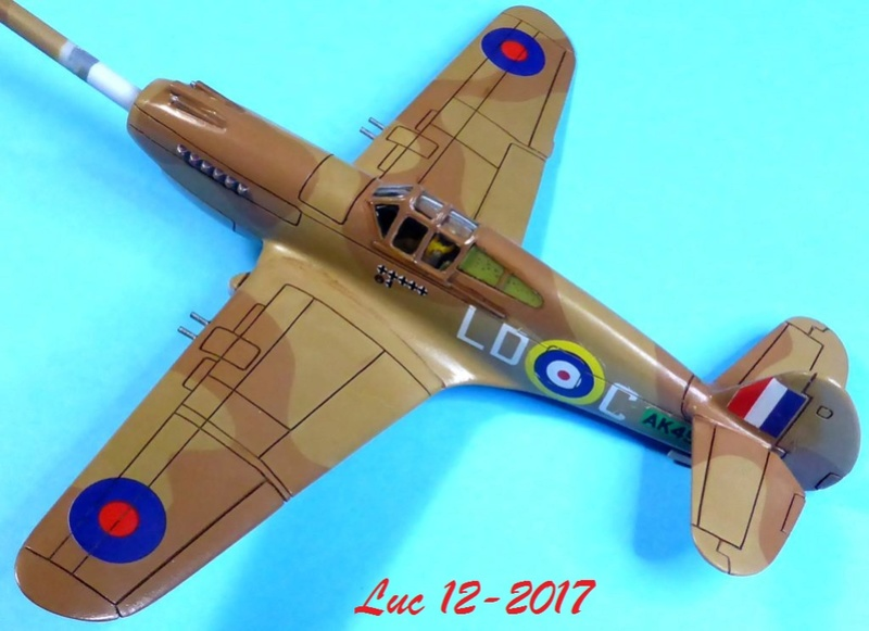 [Frog] CURTISS P-40 TOMAHAWK 2 versions - Page 5 Tpf-2010
