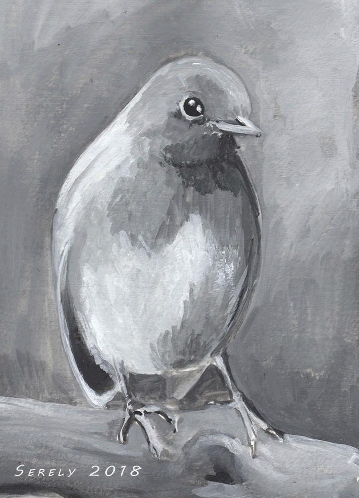[challenge de l'été P6] - Serely's training, eye of ze taïgueur - Page 4 Oiseau10