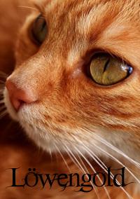 Tox bietet Euch was! - Seite 2 Cat-2710