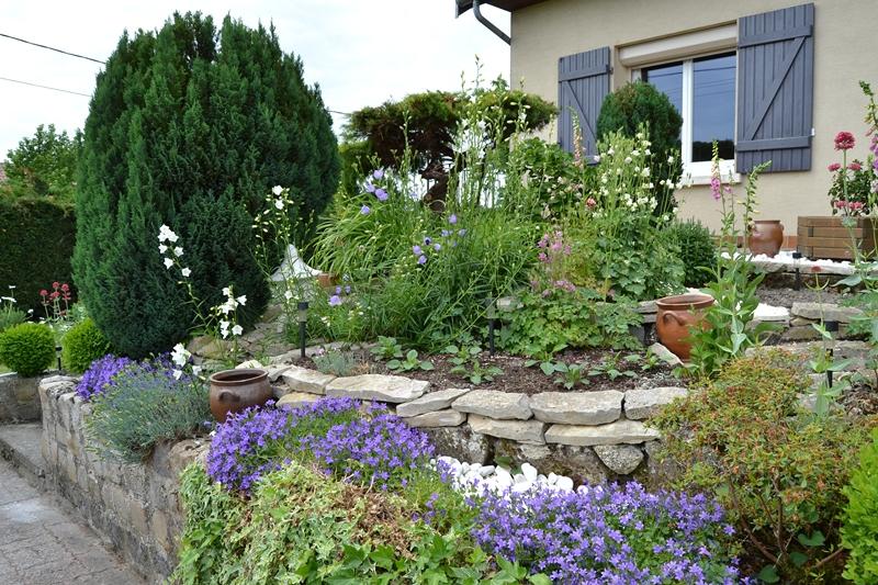 Un petit tour d'horizon de notre jardin...... 032_8013