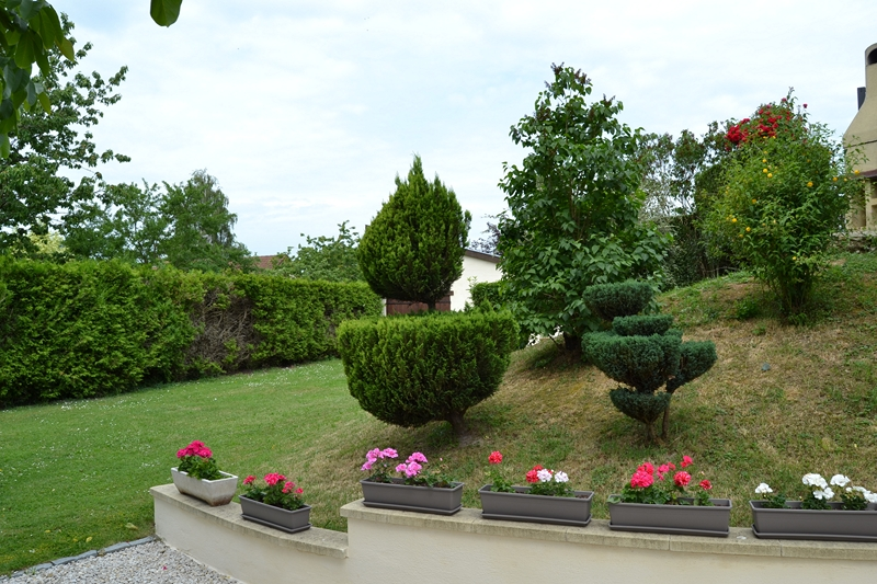 Un petit tour d'horizon de notre jardin...... 038_8013