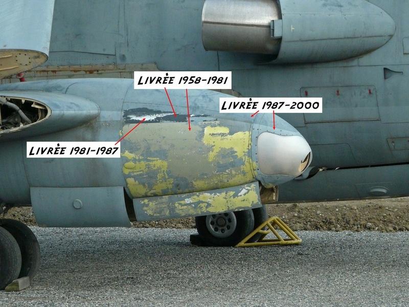 *Renaissance en-cours* Dassault Mirage F1 [ESCI 1/48] P1300010