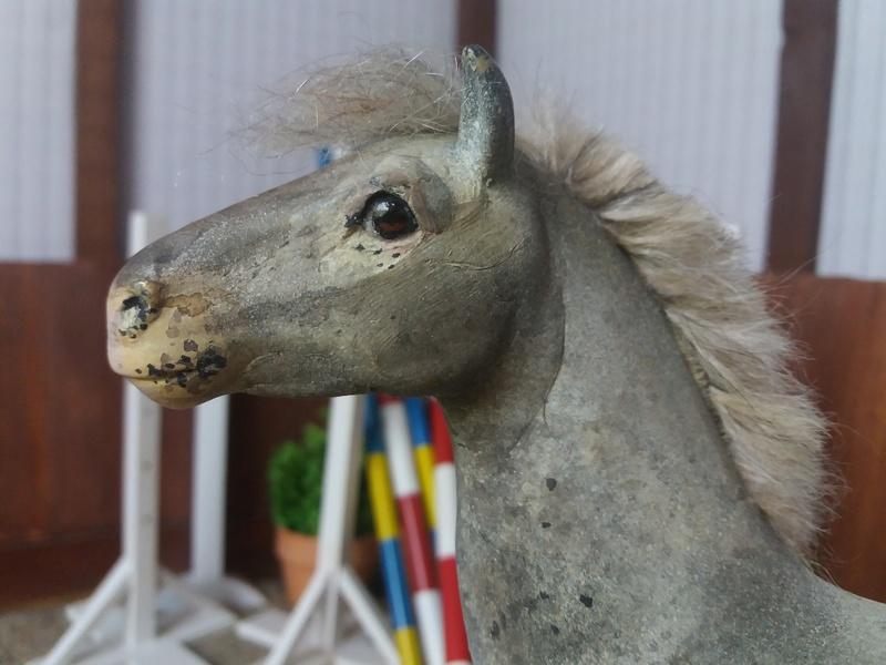 les chevaux de l'écurie Du vieux porche, bienvenue dans ce refuge miniature - Page 10 20180519