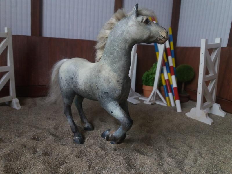 les chevaux de l'écurie Du vieux porche, bienvenue dans ce refuge miniature - Page 10 20180520
