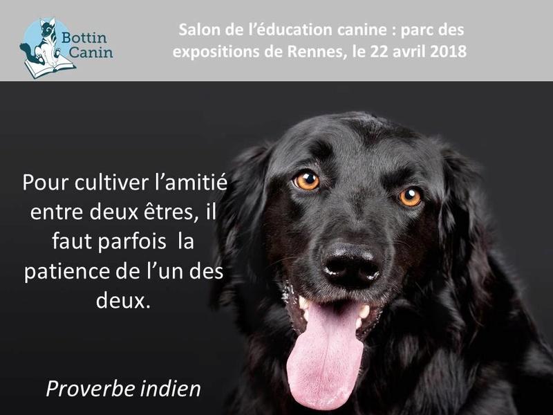 Salon de l'éducation canine et du bien-être animal - Rennes (35) - 22 avril 2018  22555110
