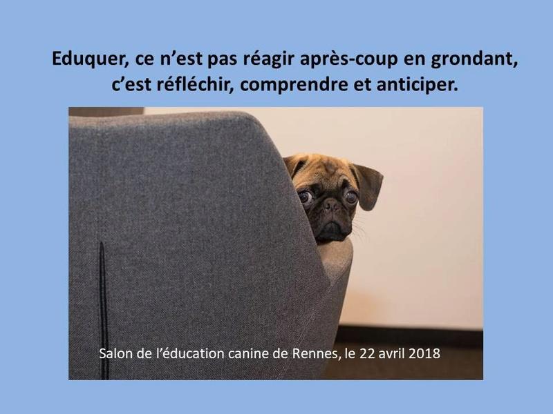 Salon de l'éducation canine et du bien-être animal - Rennes (35) - 22 avril 2018  22730010