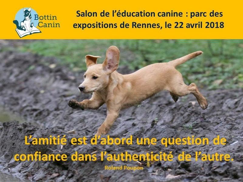 Salon de l'éducation canine et du bien-être animal - Rennes (35) - 22 avril 2018  22730510