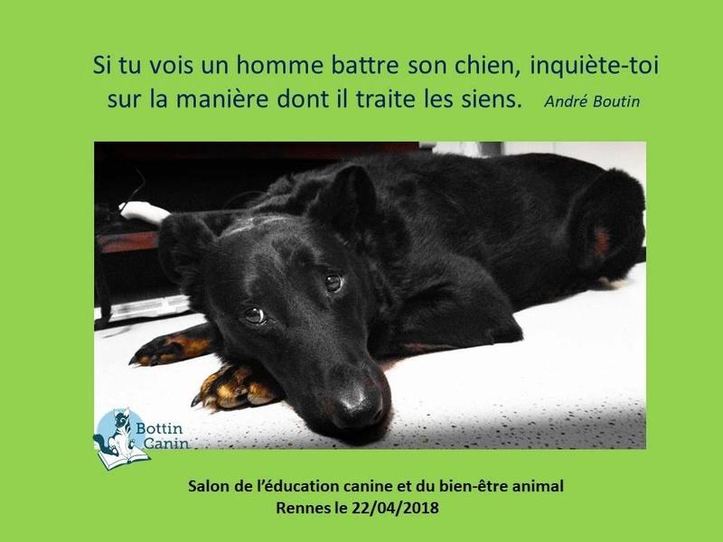 Salon de l'éducation canine et du bien-être animal - Rennes (35) - 22 avril 2018  22780410