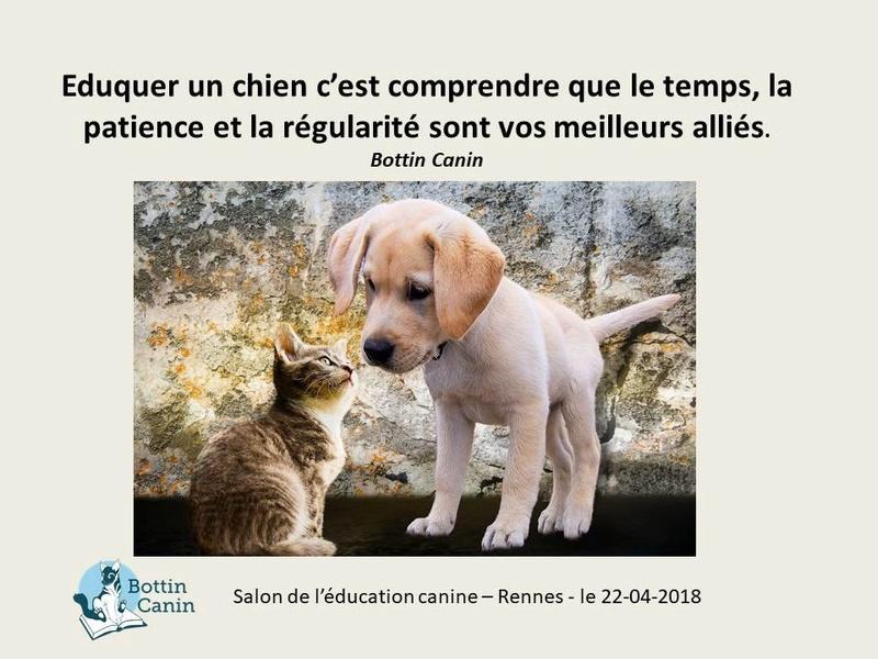 Salon de l'éducation canine et du bien-être animal - Rennes (35) - 22 avril 2018  22894210