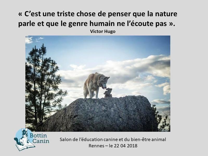 Salon de l'éducation canine et du bien-être animal - Rennes (35) - 22 avril 2018  23031411