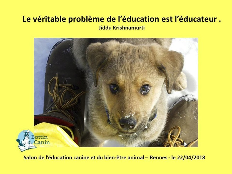 Salon de l'éducation canine et du bien-être animal - Rennes (35) - 22 avril 2018  23032510
