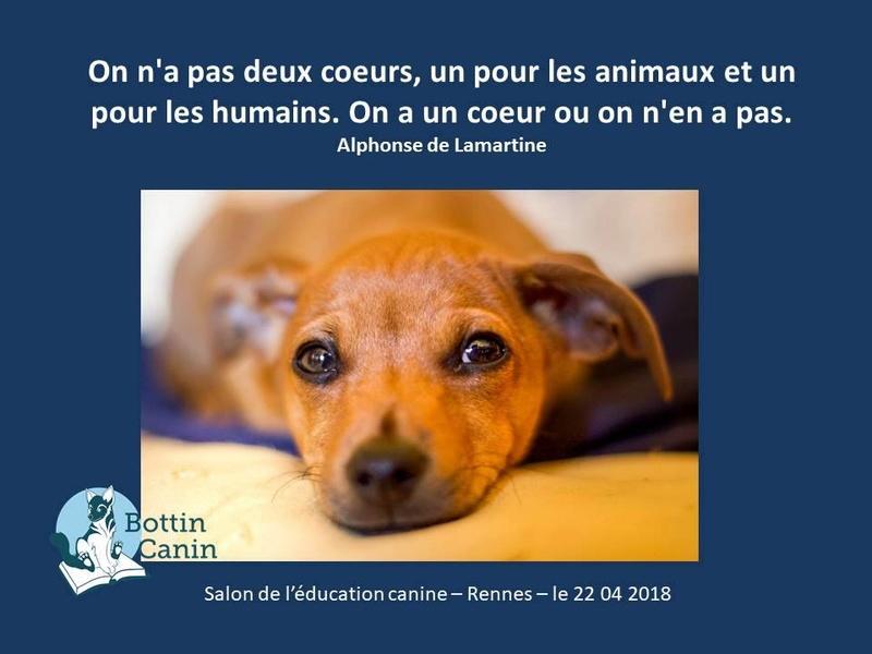 Salon de l'éducation canine et du bien-être animal - Rennes (35) - 22 avril 2018  23032710