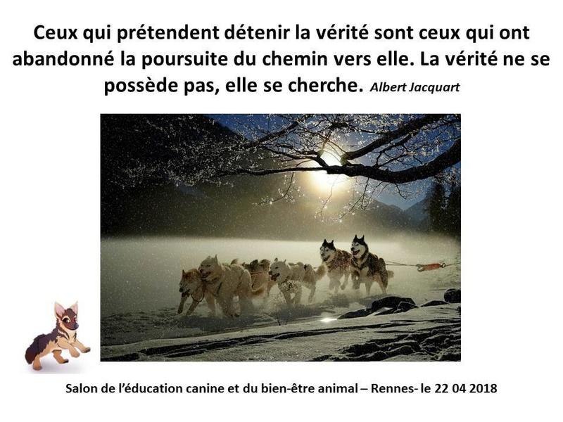 Salon de l'éducation canine et du bien-être animal - Rennes (35) - 22 avril 2018  23473110