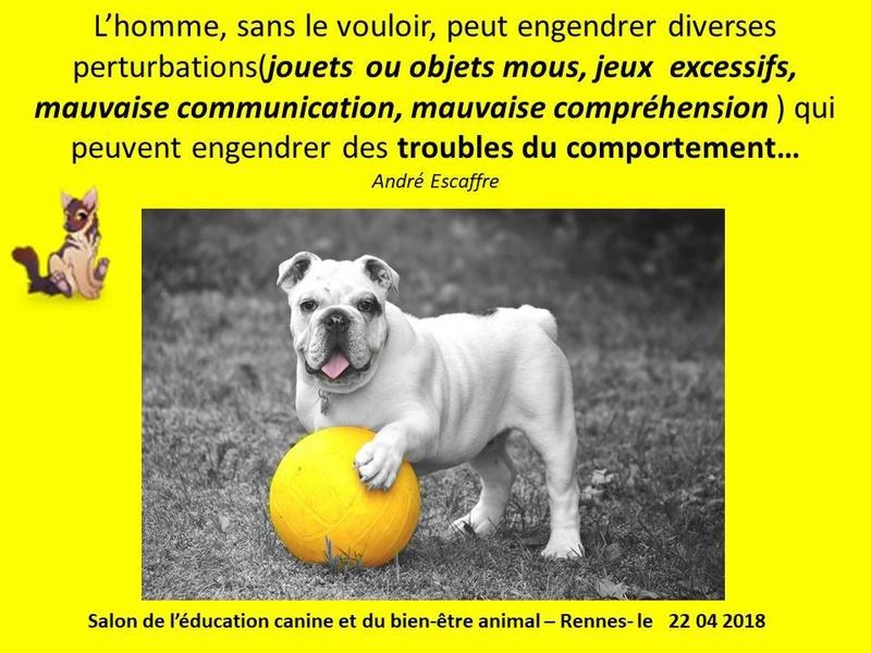 Salon de l'éducation canine et du bien-être animal - Rennes (35) - 22 avril 2018  23517710