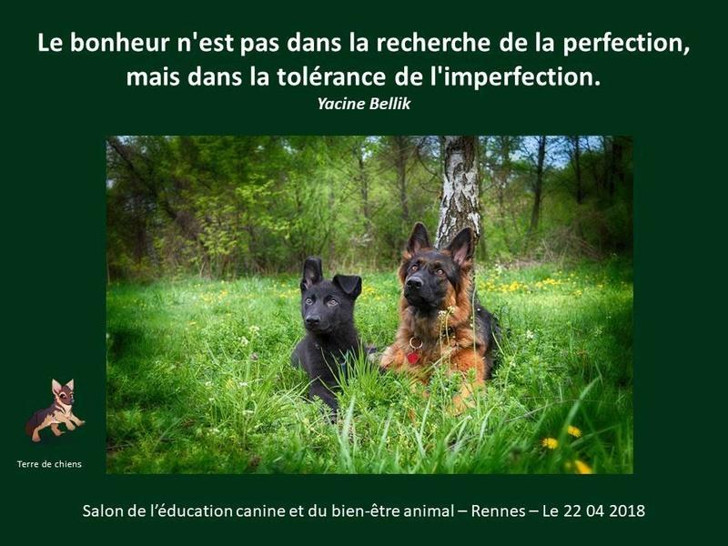 Salon de l'éducation canine et du bien-être animal - Rennes (35) - 22 avril 2018  23722210