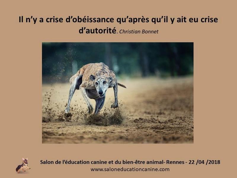 Salon de l'éducation canine et du bien-être animal - Rennes (35) - 22 avril 2018  23754810