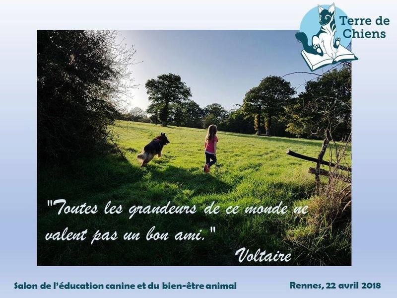 Salon de l'éducation canine et du bien-être animal - Rennes (35) - 22 avril 2018  25550410