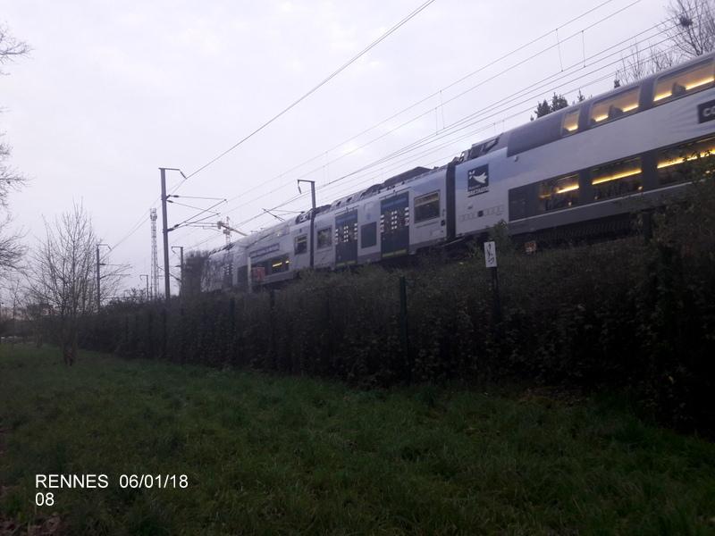 Rennes... le coin des spoters  20180117