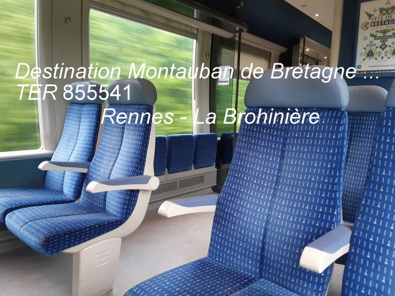 Gare de Montauban de Bretagne (Menezalban) [11/05/18] 20181063