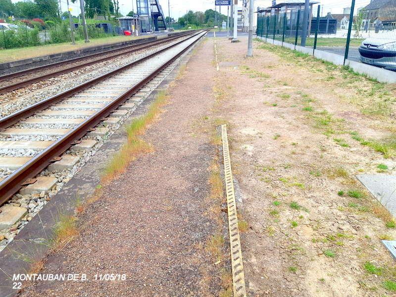Gare de Montauban de Bretagne (Menezalban) [11/05/18] 20181085