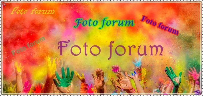 Foto-forum u slici - Page 28 785d9c11