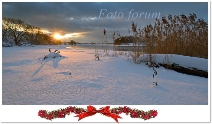 Foto-forum u slici - Page 26 82784810