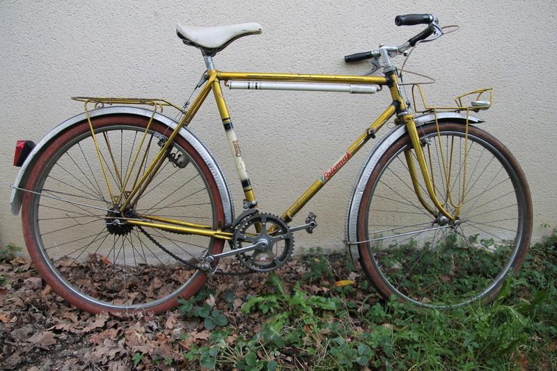 Paloma de belle couleur jaune année 60 Img_2720