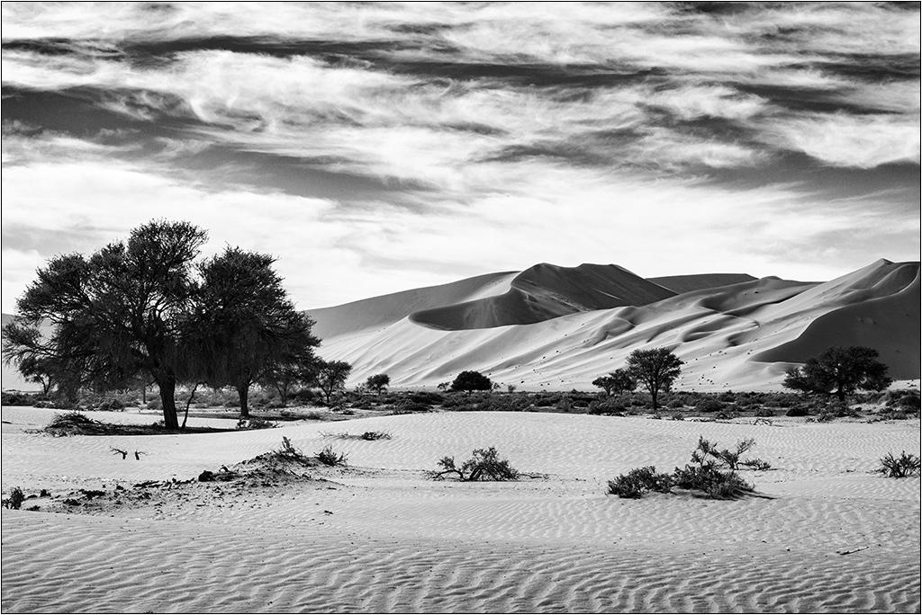 [Paysages] Dunes noir et blanc 00000746