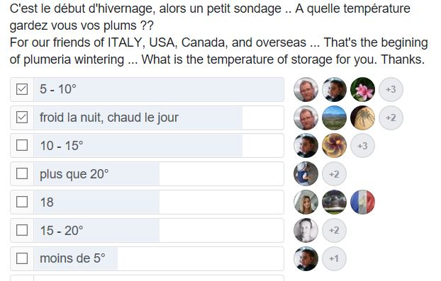 [sondage] Quelle température pour faire hiverner les frangipanier? Sondag10