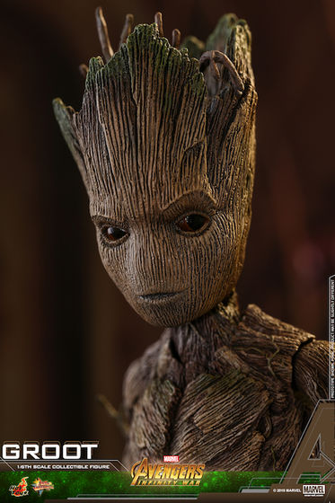 Avengers - Infinity Wars 1/6 (Hot Toys) 17392026