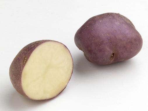 Légumes de nos régions  Pomme-10