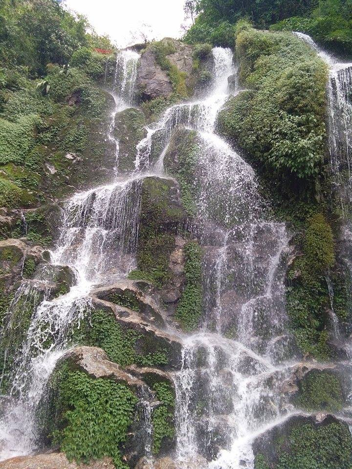 সুন্দরী সিকিমের সঙ্গ - যাপন sundari Sikkim 24020010