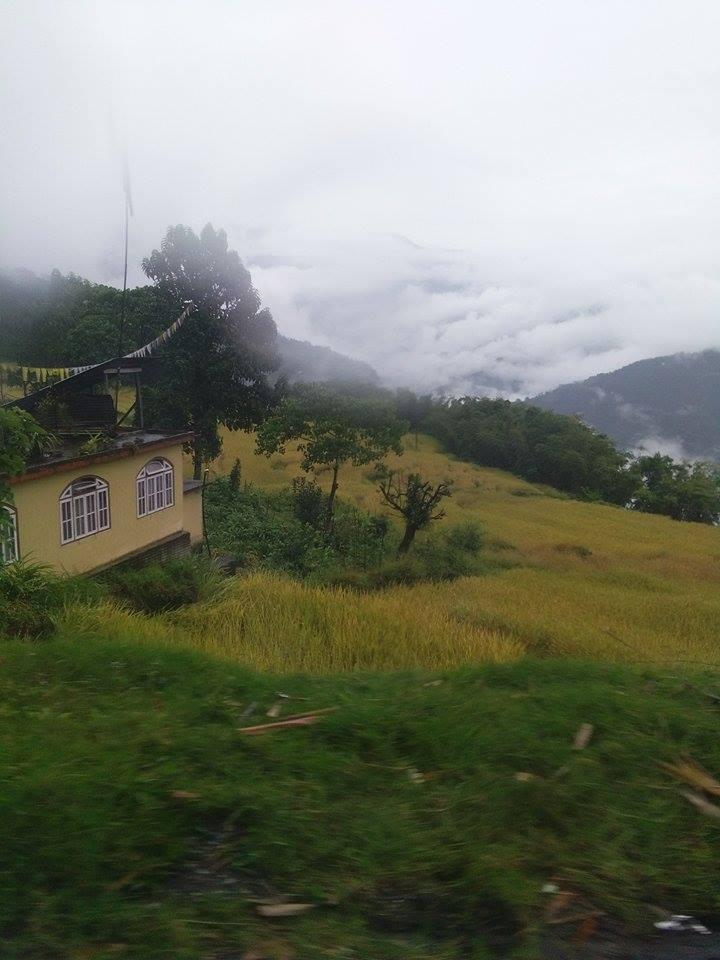 সুন্দরী সিকিমের সঙ্গ - যাপন sundari Sikkim 24740610
