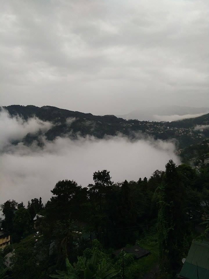 সুন্দরী সিকিমের সঙ্গ - যাপন sundari Sikkim 24824510