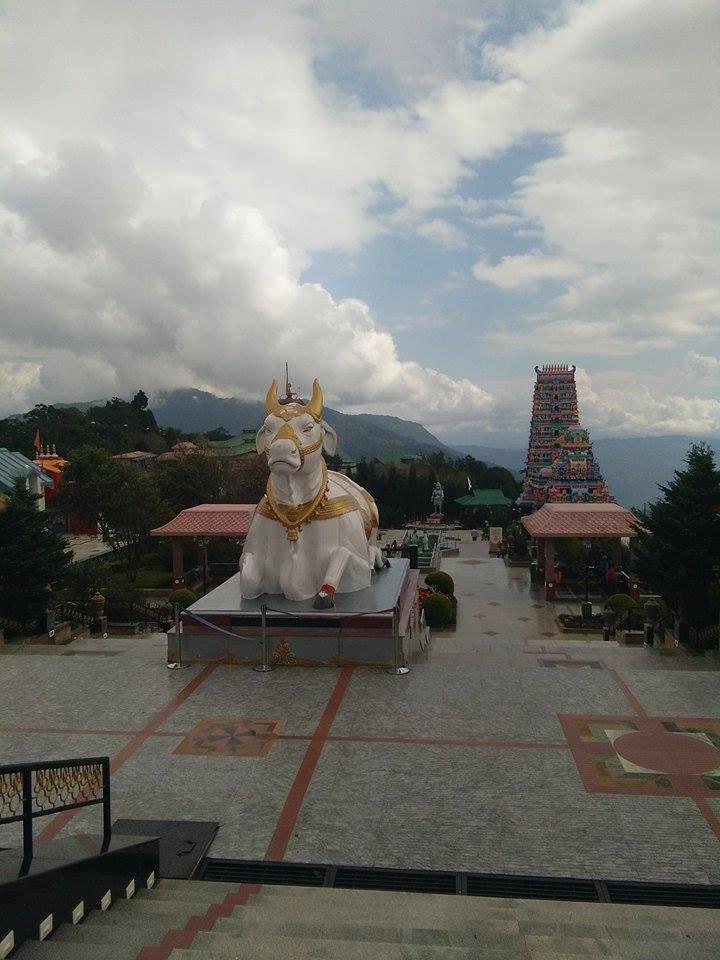 সুন্দরী সিকিমের সঙ্গ - যাপন sundari Sikkim 25181510