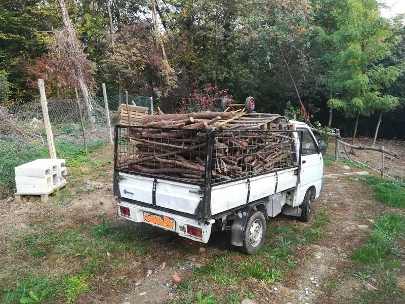 Trasporto legna con Ape piaggio Img_2026