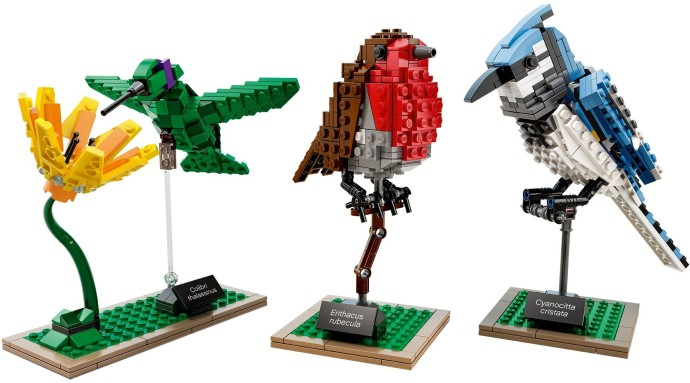 [Produits] Votre Collection de LEGO Ideas Birdz10