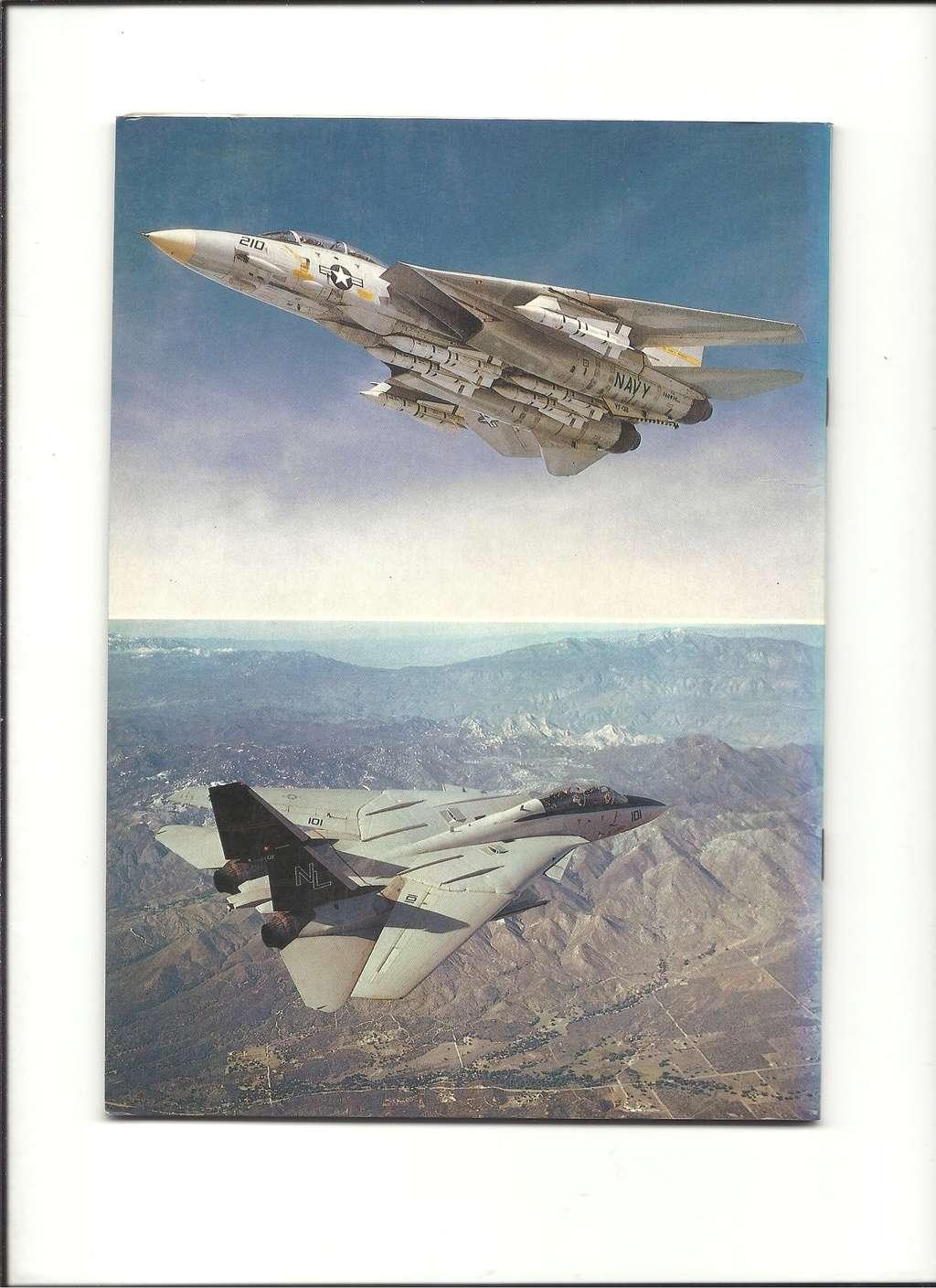 Renseignements sur les couleurs décoration missiles Phoenix, Sparrow, Sidewinder Livre_45