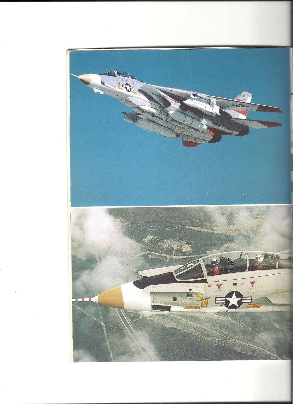 Renseignements sur les couleurs décoration missiles Phoenix, Sparrow, Sidewinder Numyr246