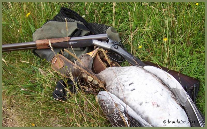 Club des possesseurs de fusils à chiens (apparents!) Lewisg11