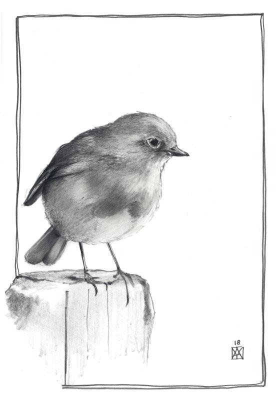 Le Carnet de Pista - Page 4 Prevu102
