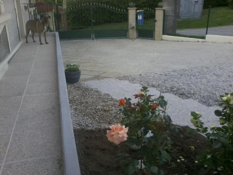 cour de ferme Photo010