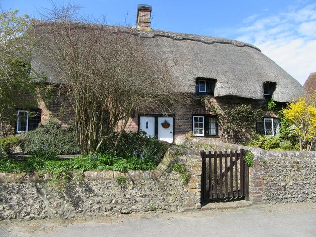 Ma Grande Bretagne : Somerset : suite et fin . Img_0112